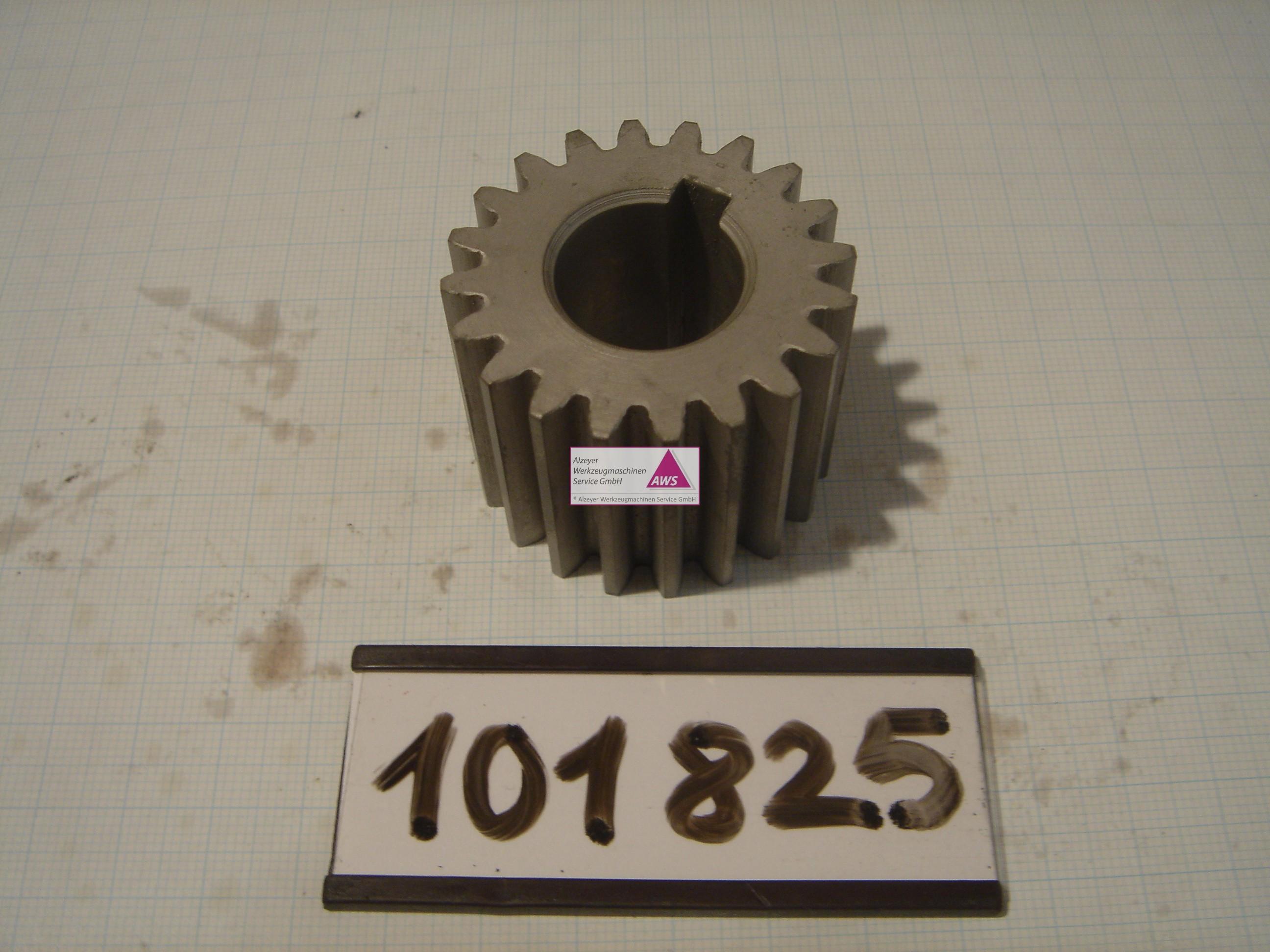 Zahnrad Indexorbitmotor G10ZZ
