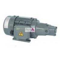 Pumpe T-Rotor 12MS + Motor 100W