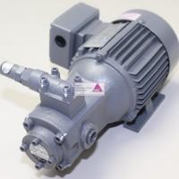 Pumpe T-Rotor 208 HAVB + Motor 400W