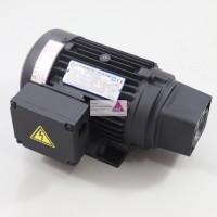 Pumpenmotor T-Rotor 400W für AMTP Pumpen