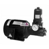 Pumpe T-Rotor ATP - 13MSVB